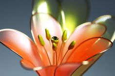 Брошь, пин Кливия - яркий веселый оранжевый цветок #dipflowers #crystalresin #crystalflora #pin #brooch #blossom #clivia #epoxyresin #resin #glassflowers #resinandwire #transparentflowers #dipit #fantasyflowers #wire #wireproducts #2018 #decoration #jewelry #unusualgift #creativegift #giftforgirl #kanzashi #orangeflower #brightorange #swarovski #orange