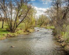 https://flic.kr/p/GpMQDb | 20160420-Spring color along Rapid Creeek. | #dakota #POTD #Day1572 #spring #RapidCreek #SouthDakota #Rapid #City