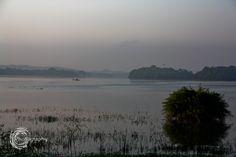 Misty Morning by Chaminda Silva on 500px