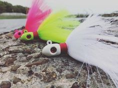 Snook Fishing Snook Bait, Snook Lures And Equipment — Hunting and Fishing Depot Fishing 101, Best Fishing, Salt Water Fish, Salt And Water, Small Fish, Types Of Fish, Fishing Equipment, Bait, Hunting