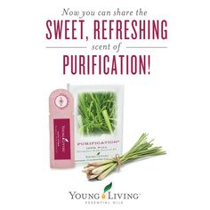 Sample Young Living essential oils or share them with others!