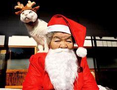 Misao and Fukumaru the cat
