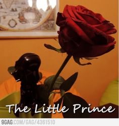 The Little Prince and the rose.