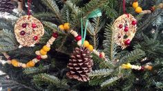 Cheese balls, peanuts, cheerios and cranberries for a colorful garland- do this without the peanuts