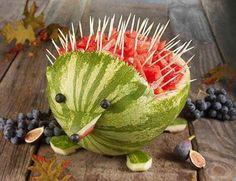 Watermelon Echina