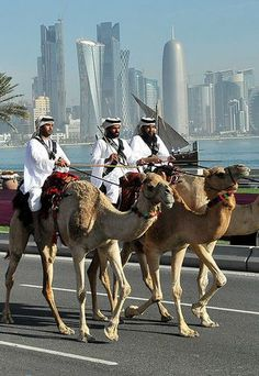 Camels and riders in Dubai. Abu Dhabi, Travel Around The World, Around The Worlds, Timor Oriental, Arab World, Dubai Travel, Qatar Travel, Sharjah, Dubai Uae