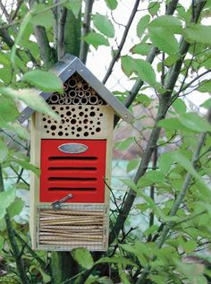 insectenhotel - http://tuinieren.nl