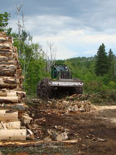 SKIDD AWAY! Logging Equipment, Heavy Equipment, Log Projects, Outer Space, Old Things, Rustic, Farming, Tractors, Trains