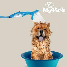 15,20€  Douchette-Brosse pour Animaux Domestiques My Pet Brush