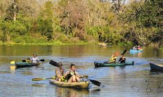 Florida wants licenses on canoes, on kayaks, and paddle boards. Should paddlers have say to pay for the services used by motor boaters?