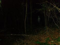 Ghost At Kings Cliff Near North Petherton In Somerset 2008 Creepypasta, Unexplained Mysteries, Supernatural Beings, Mothman, Cryptozoology, Ghost Hunting, Afraid Of The Dark, Look At You, Somerset