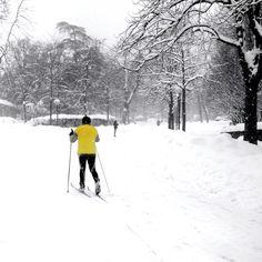 Una gran nevicata... Giardini Margherita