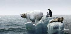 Un proyecto de acuerdo en la mesa de las negociaciones sobre el clima