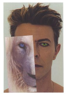 """Bell added: """"I felt compelled to write them [the memories] all down, with the desire to share them. """"This book is written from the perspective of someone whose path, once upon a time and intermittently, crossed that of a man called David Jones, who also happened to be David Bowie"""" (Image: Edward Bell / Unicorn Publishing)"""