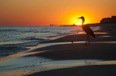 Sunset at Orange Beach, Alabama.