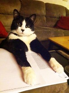 He doesn't let you study