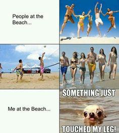 At the Beach^^