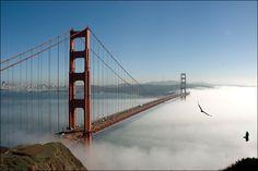 Golden Gate Bridge/ Мост Золотые Ворота в тумане. Сан-Франциско/ США