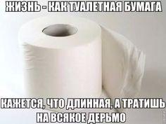 Жизнь как туалетная бумага..