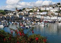 Explore Woodlands Guest House in Brixham. Enquire online today with Devon England, Cornwall England, Devon Uk, South Devon, Visit Devon, Visit Uk, Places To Travel, Places To Visit, Exeter City