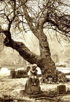 Southern Gothic on Pinterest   107 Pins