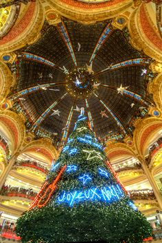 Famous Chrismas tree of the Galeries Lafayettes store,  Paris Never saw it with the tree... But it's the classiest department store I've ever been in. :-) I still have some soaps I bought there in 2007.