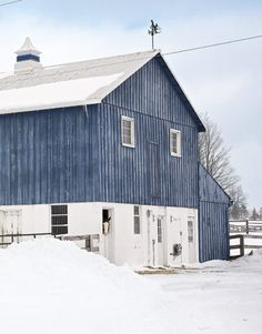 New York barn.  Love Max (the Quarter Horse) peeking out.