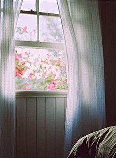 Lying in bed with a breeze coming in the window and listening to the birds singing. Heaven.