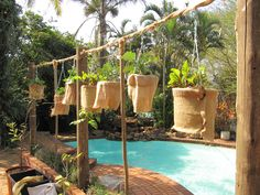 I made a hanging garden with buckets covered in hessian sack. I planted strawberries in some and the others I planted peppers and beetroots in the top and tomatoes in holes in the bottom. Upside down growing;)