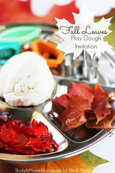 Fall Leaves Play Dough Invitation. A perfect way to explore fall and exercise fine motor skills at the same time at home or in your preschool classroom.