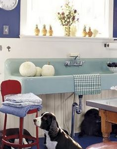 Vintage farmhouse sink. Great color. Look @Christa Badge Linderer, @Alicia Charlefour, and @Kara Badge-Bates - there's Candy! :)
