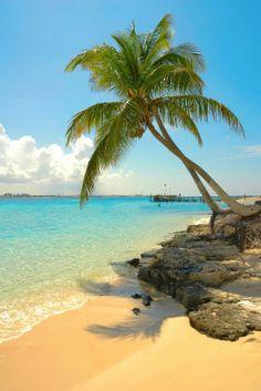 The Bahamas please!!!