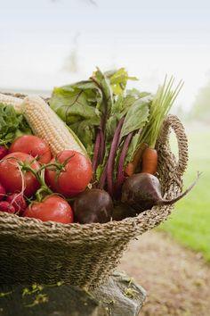 Fresh Vegetables In A Basket Canvas Print / Canvas Art by Shannon Fagan