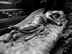 Looks like the angel laid down for a nap and was frozen