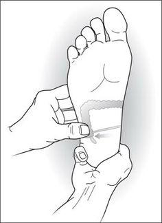 Appendix area Reflexology, Board, Planks