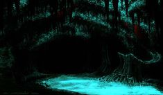 The Glow-Worm caves in New Zealand create an eerie blue light to