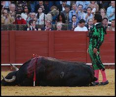 #Sabíasque El Fundi se retiró 1985 tras sumar apenas 13 contratos como novillero. Volvió a los ruedos en septiembre de 1986... hasta ahora...El Fundi, que este año se despide, matará 6 toros en Fuenlabrada este sábado. ¡Acude a homenajear a este gran torero! http://ow.ly/dzzsr