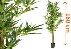 Vásárlás: Tuin Műnövény - Bambusz 160 cm Művirág árak összehasonlítása, Műnövény Bambusz 160 cm boltok Perfume, Herbs, Plants, Bathroom, Products, Fotografia, Timber Wood, Dekoration, Nice Asses