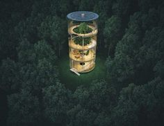 Cylinder house built around the tree