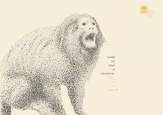 Prefeitura de Montes Claros: Lion tamarin