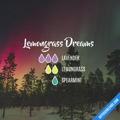 Lemongrass Dreams - Essential Oil Diffuser Blend