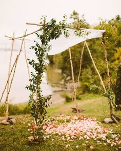 Swell Botanics created the chuppah, using greenery and scattered rose petals for a hint of color.