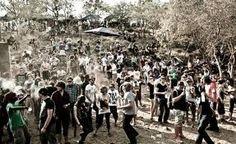 oppikoppie - Google Search Festivals, Burns, Dolores Park, Photographs, Rock, Google Search, City, Music, Musica