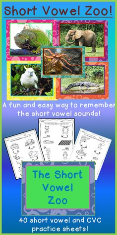 Students learn the short vowel sounds and create a motion for each of the sounds.  They practice what they've learned making CVC words on the 40 practice sheets included.  You can post the 5 colorful posters to remind the children of the sounds while they are reading and writing in your classroom! $