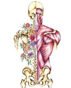 Medical Anatomy Art Stunning Watercolour Flower Skeleton and Human Anatomy Art, Anatomy Drawing, Watercolor Flowers, Watercolor Art, Male Figure Drawing, Medical Anatomy, Medical Art, Watercolor Illustration, Art Drawings