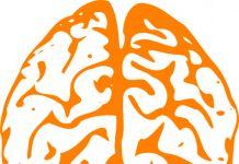 Definición de Inteligencia, qué es, tipos de inteligencia