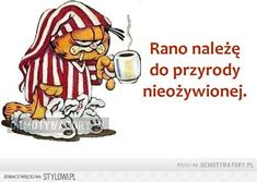 Stylowi.pl - Odkrywaj, kolekcjonuj, kupuj Weekend Humor, Important Quotes, Coffee Quotes, Story Of My Life, Man Humor, Best Memes, Motto, Animals And Pets, Quotations