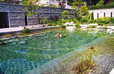 Der dienstälteste Schwimmteichbauer der Welt beschreibt fünf Kategorien von Schwimmteichen.
