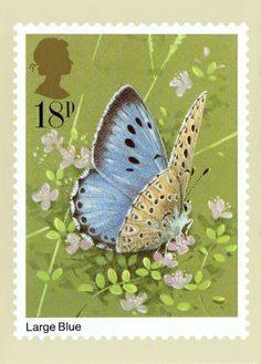 Royal Mail Butterfly Stamps | PHQ 51(b) Large Blue