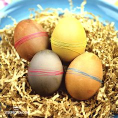 Get your eggs ready for Easter with tea! You Got This, Eggs, Tea, Happy Easter, Community, Recipes, High Tea, Happy Easter Day, Rezepte